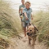 Bang dat je hond artrose krijgt? 3 symptomen om op te letten