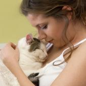 Een band scheppen met je nieuwe kat? Probeer deze 4 stappen!
