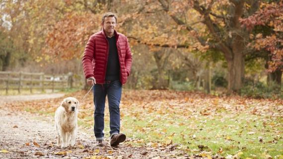 Mag je nog met je hond wandelen als hij artrose heeft?